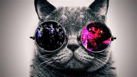 Pusheen Cat iPhone Wallpaper