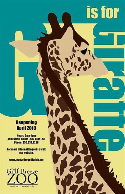 Posters Zoo Poster Giraffe Drawing Uneek Giraffes