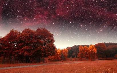 Night Fall Stars Sky Autumn Forest Object