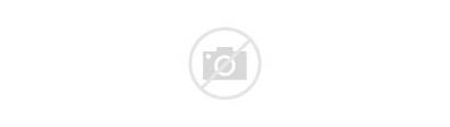 Human Comparison Allosaurus Svg Wikimedia Commons Wikipedia