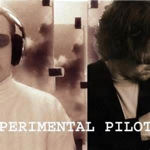 Experimental Pilot