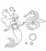Seahorse Coloring Pages Mermaid Sea Horse Printable Print Baby Little Sven Sofia Ones Exemplary Momjunction Coloringbay Philatelicsannex Exotic sketch template