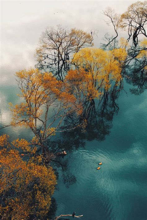 Best Photos Are Taken From Above, As The 2018 Drone Photo ...