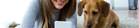hundehalter haftpflichtversicherung schlamassel auf vier