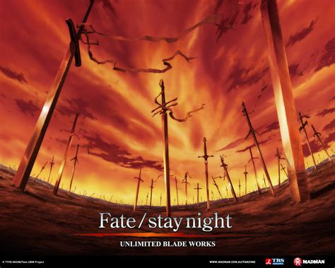 fatestay night unlimited blade works  madman