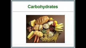 What U0026 39 S In Our Food 4 - Carbohydrates