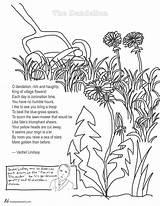 Dandelion Coloring Poem Poems Lindsay Vachel Pages Poetry Colouring Tweetspeakpoetry Stress Adults Adult Flower English Teachers Teacher sketch template