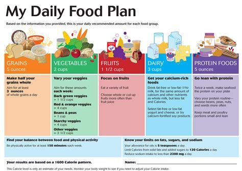 cuisine plan type daily food plan large
