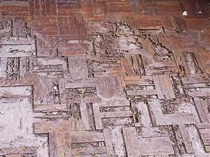 Termite damage photos termite web for Termites parquet
