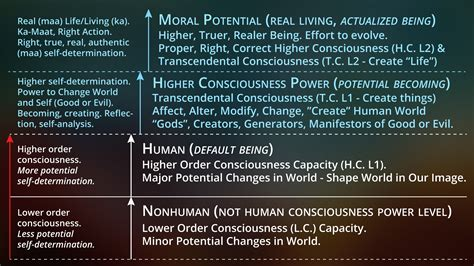Higher Consciousness Apotheosis