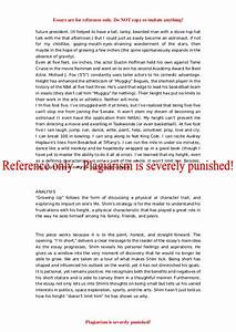 Essay In English For Students What Does Success Mean To You Essay In An Essay What Is A Thesis Statement also Pollution Essay In English What Is Success Essay Personal Statement Samples What Is Success In  Essay Examples For High School