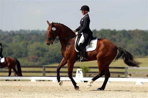 BREC Dressage Horse Farm Photo Gallery - BREC Dressage ...