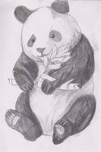 Panda Bear by silent-naito-tears on DeviantArt