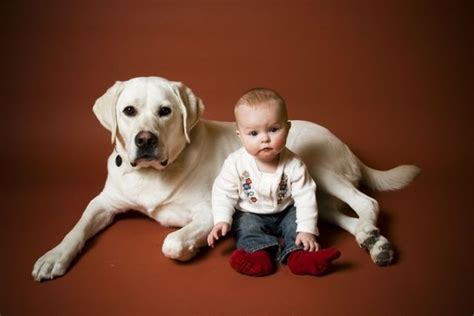 positive emotions   day children  dogs  pics