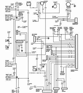 1989 F350 7 5l Wiring Diagram Site