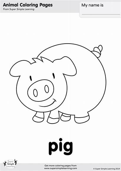 Pig Coloring Pages Simple Super Farm Animals