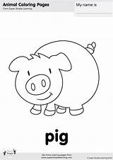 Pig Coloring Pages Simple Super Farm Animals Animal Worksheets Flashcards Kindergarten Printable Esl Activities Learning Colouring Preschool Sheets Templates Prek sketch template