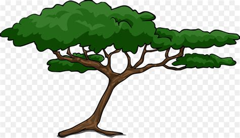 African Trees Wattles Acacia Clip Art