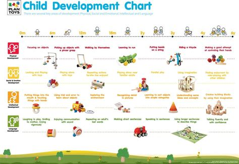 plan toys development chart easybee  child development charts pinterest child