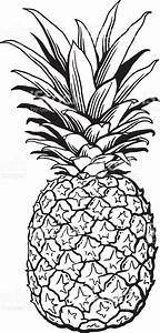 Black And White Pineapple Illustration stock vector art ...