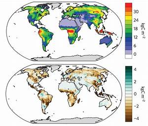 World U0026 39 S Plants And Soils To Switch From Carbon Sink To