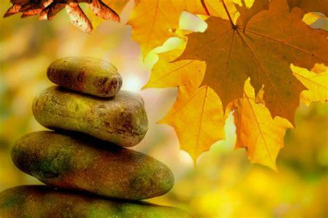 fall equinox yin yoga sound bath  nancy lea