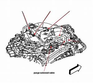 Service Manual  Evap Hose Removal 2008 Cadillac Dts