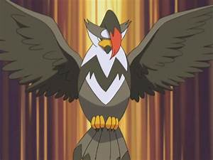 Barry (anime) | Pokémon Wiki | Fandom powered by Wikia