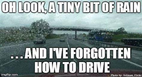 Rain Memes - tiny bit of rain in los angeles and the whole city goes nuts rain pinterest funny the o