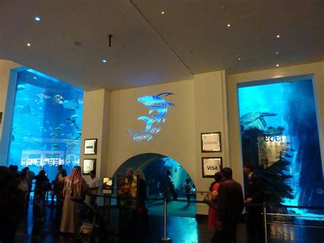 the dubai mall aquarium dubai mall aquarium tunnel exit ticket desks 187 dubai aquarium underwater zoo gallery