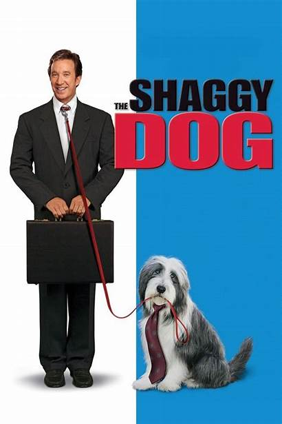 Shaggy Dog Movies Jr Downey Robert Disney