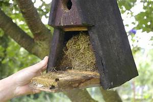 Asseln Im Garten : projekt naturgarten page 4 mein sch ner garten forum ~ Lizthompson.info Haus und Dekorationen