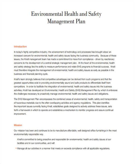 management plan examples   word pages