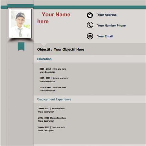 Cv Modèle Professionnel exemple de cv professionnel gratuit sle resume