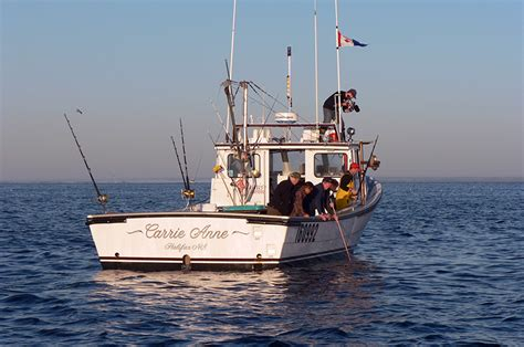 macinnis bluefin tuna charters tourism nova scotia