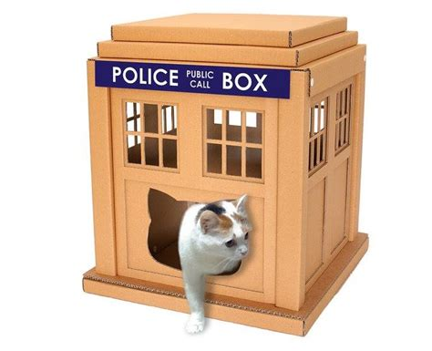 9 Of The Best Cardboard Cat Houses