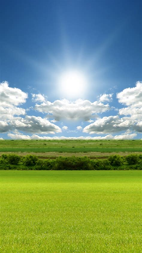 Multiple sizes available for all screen sizes. Grass Sun and Sky Android wallpaper - Android HD wallpapers