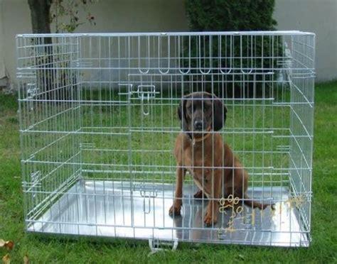 box auto pieghevole gabbia trasportino pieghevole cage box auto per cani
