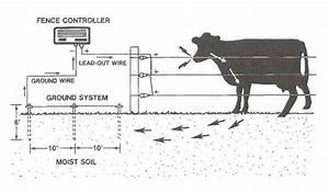 Electric Fence Schematic Diagram