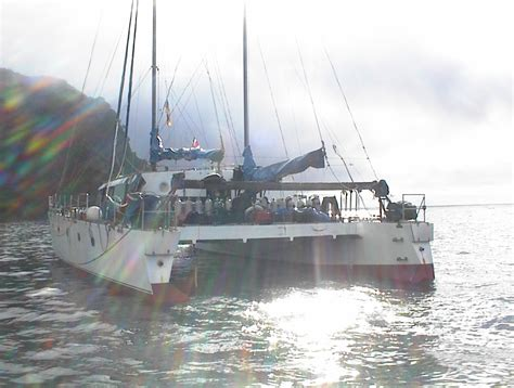 Catamaran Dive Boats by Dive Center For Sale Dive Catamaran Liveaboard For Sale