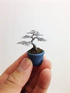 catch up with ella the world s smallest tree
