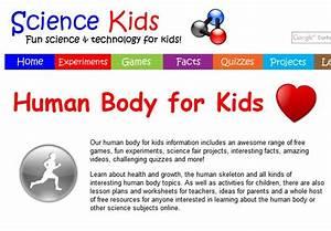 Y2 Science Project