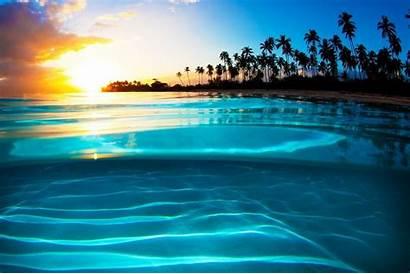 Sunset Turquoise Tropical Beach Landscape Palm Sea