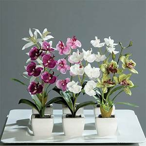 Orchideen Ohne Topf : 6 mini orchideen im topf 18 cm kunstblumen kunstpflanze set orchidee dekoblume ebay ~ Eleganceandgraceweddings.com Haus und Dekorationen