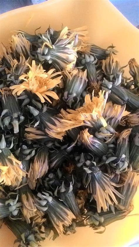 miele di fiori di tarassaco finto miele di tarassaco creazioni in cucina