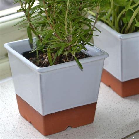 Kitchen Windowsill Herb Pots by Windowsill Herb Pot White Weston Mill Pottery Uk