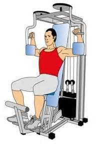 1000 images about 10 most important middle chest exercises on bench press smith