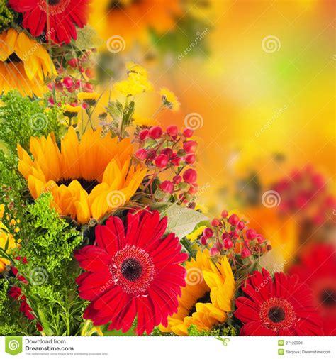 Fleurs D'automne, Bouquet De Gerber Photo Stock