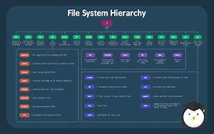 Anatomy Of A File System