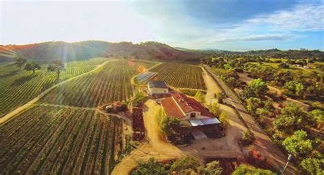 visit cass vineyards  winery  paso robles california